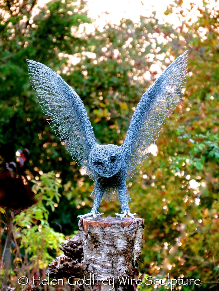 Helen Godfrey owl