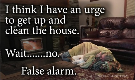 housecleaning-meme