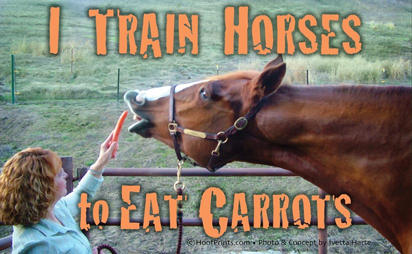 I Train Horses to Eat Carrots