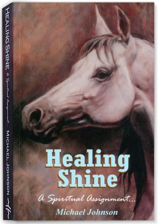 ©HealingShinebookcover
